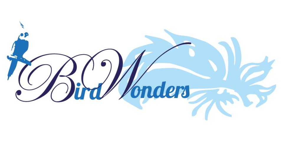 BirdWonders-1